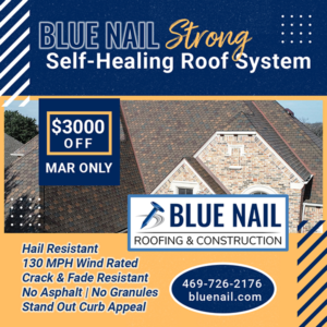 March 2020 Blue Nail Special Offer